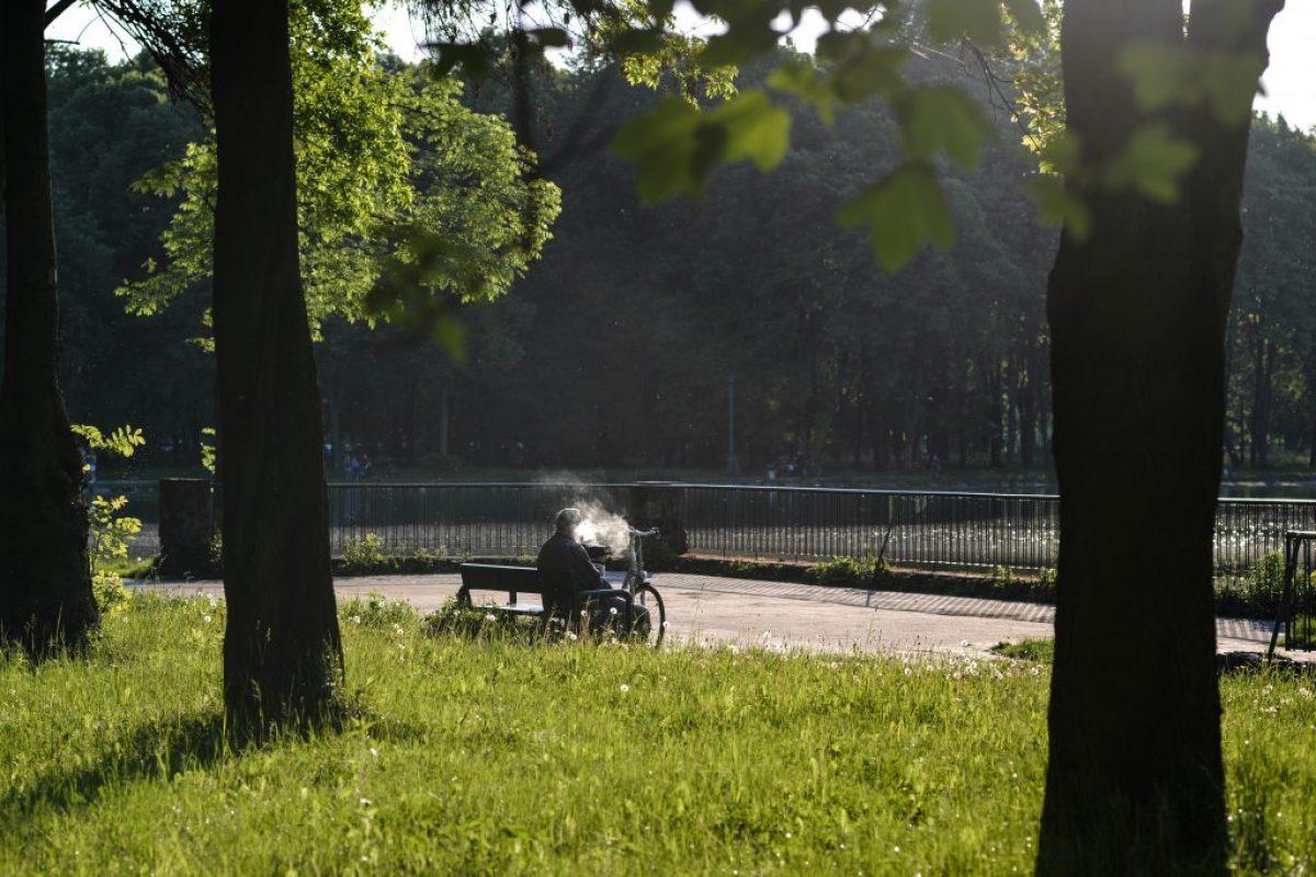 Les vieux dans les parcs